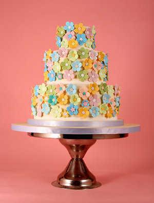 torta22