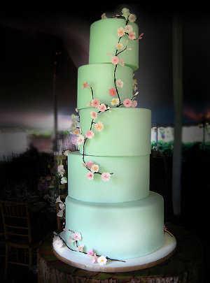 torta41